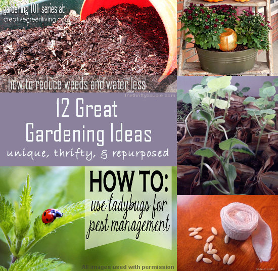 great-gardening-ideas-unique-thrifty-and-repurposed