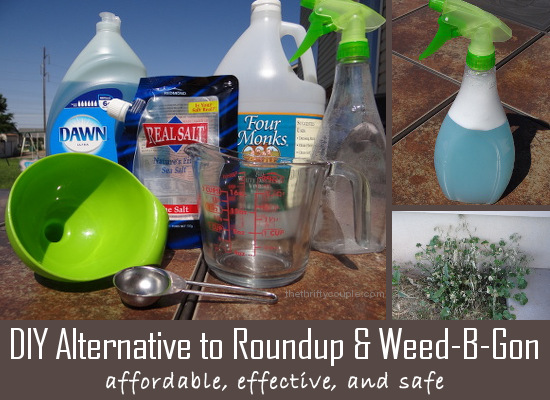 DIY Alternative to Roundup and Weed B Gon
