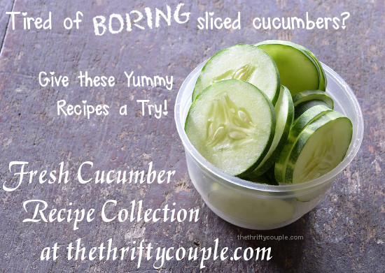 fresh-cucumber-recipe-collection