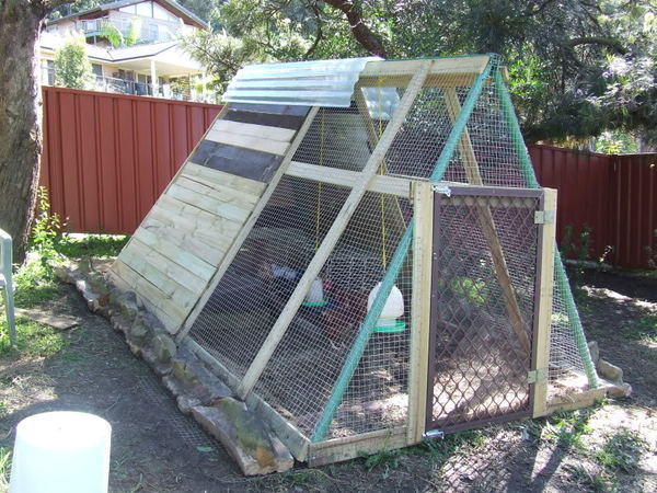 old-swing-set-into-a-chicken-coop