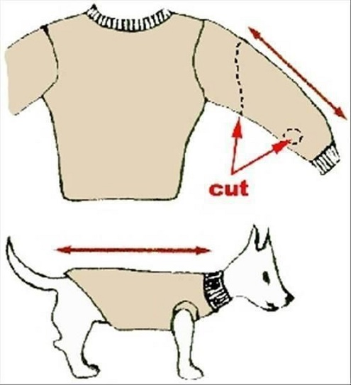 How To Turn Old Sweaters And Sweatpants Into No Sew Dog Sweaters In 5