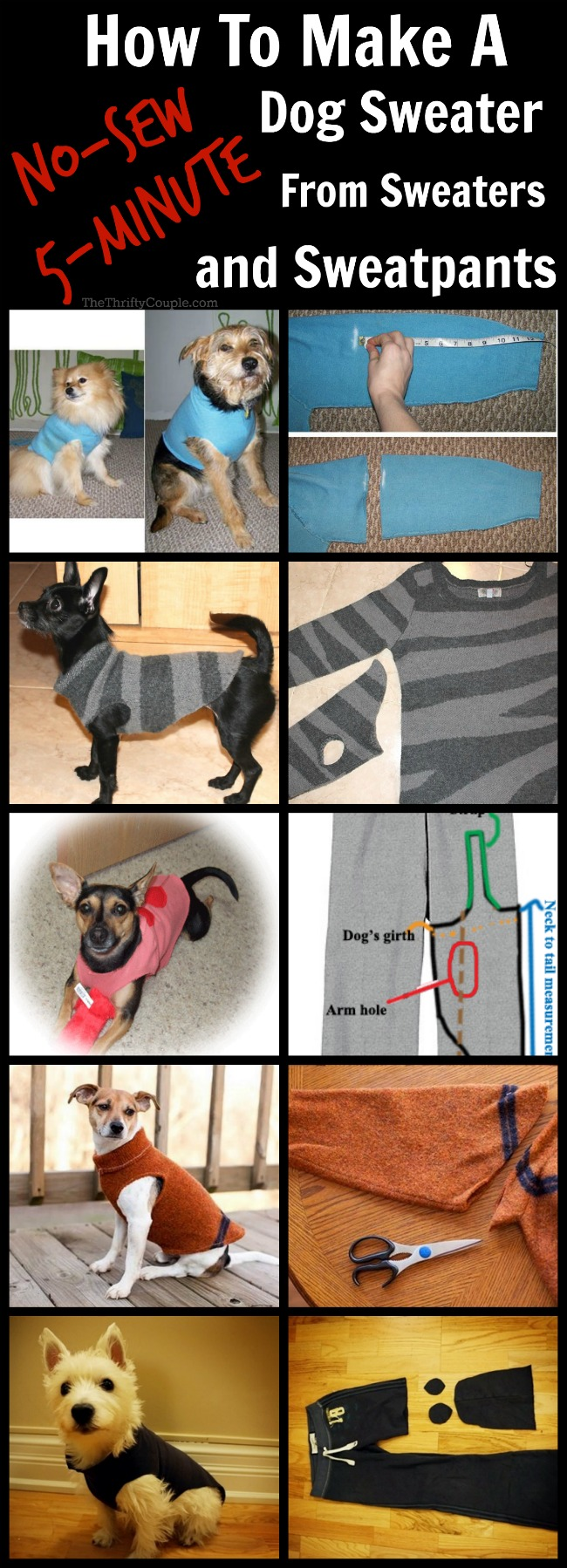 how-to-make-no-sew-dog-sweater-from-sweater-sweatpants-sweatshirt
